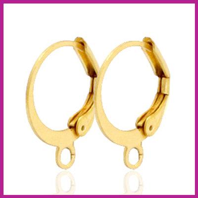 RVS stainless steel sluitbare oorringen goud