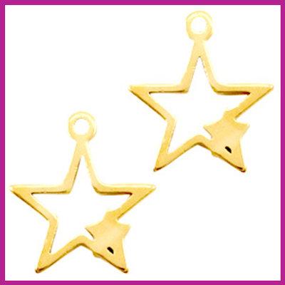 RVS stainless steel bedel ster met ster goud