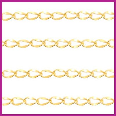 (RVS) Stainless steel jasseron ovaal goud