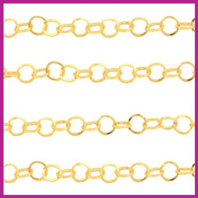 (RVS) Stainless steel jasseron rond goud
