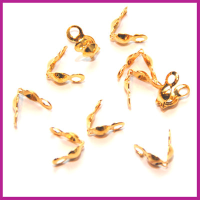 Kalotjes GPL goudkleurig 4 mm
