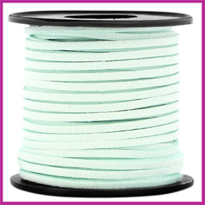 Imitatie suede veter 3mm Light mint green per meter