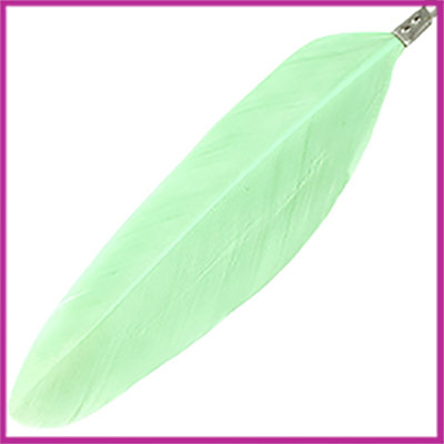 Veertje ca. 7 - 8cm met klemmetje Chrysolite green