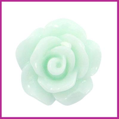 Kunststof kraal roosje 10mm Shiny light mint green