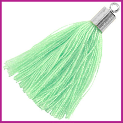 Kwastje met zilver eindkap ca.34mm Pastel spearmint green
