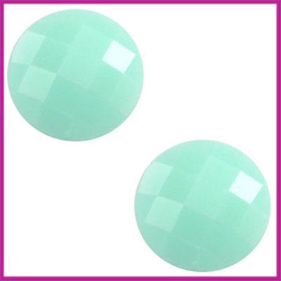 Basic cabochon plaksteen acryl 10mm light green turquoise