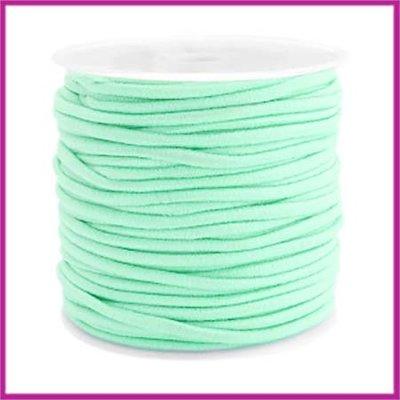 Gekleurd elastisch draad Ø2,5mm Light turquoise green